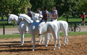 Old Spice horse quartet sample new fragrances in Hyde Park