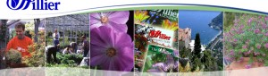 Hillier Garden Centres to drive customer engagement and sales via Twitter