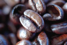 United Coffee UK & Ireland wins top rating in Food Safety Audit for Dartford roastery