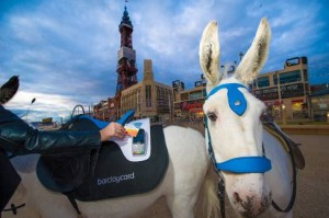 Donkey rides on Blackpool beach go cashless and contactless with Barclaycard