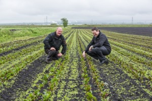 Burscough manager Richard Ford with Booths supplier Jason Coxhead in his beetroot fields
