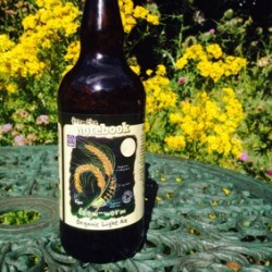 From the Notebook's Glow-worm beer supports insect charity, Buglife
