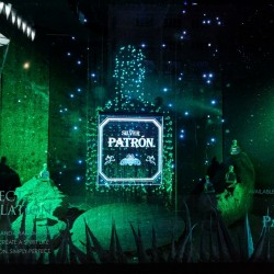Patrón Tequila takes over window display at Selfridges in a Christmas sales drive