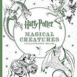Kings Road Publishing expands partnership with Warner Bros. Consumer Products for Harry Potter colouring book range