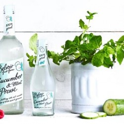 Belvoir Fruit Farms launches new Cucumber & Mint Pressé and limited edition Elderflower Cordial to mark Queen's 90th birdthay