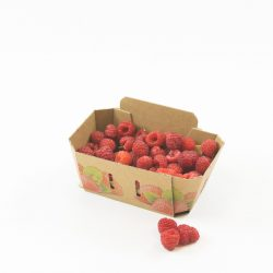 Smurfit Kappa's sustainable fruit packaging led to 50% sales increase