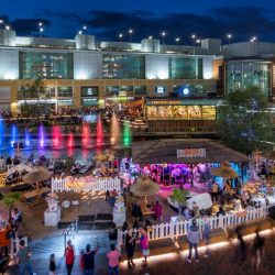 Well positioned portfolio and record leasing drives strong performance at Hammerson