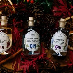 Gin Distillery gets in festive spirit with tasting event