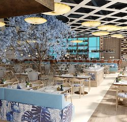 Manchester Airport unveils  new food and beverage offer in £1bn transformation of Terminal Two