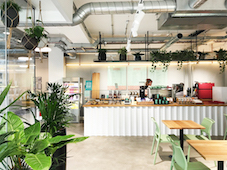 intu trials direct retailing with local focal coffee shop