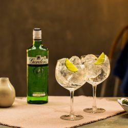Gordon's Gin celebrates 250th birthday