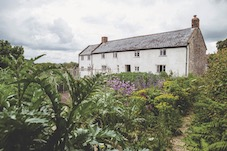 River Cottage to launch new beer and cider ranges
