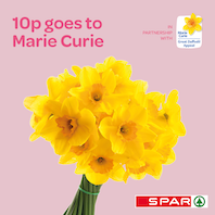 Spar sells daffodil bunches in support of Marie Curie