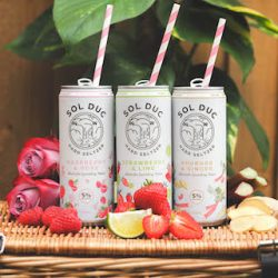 Aston Manor launches first hard seltzer range, Sol Duc