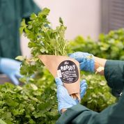 Whole Foods Market partners with Infarm to offer fresh produce to London shoppers