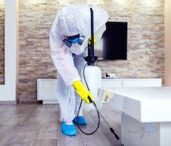 Visible cleaning is key to consumer confidence, research shows
