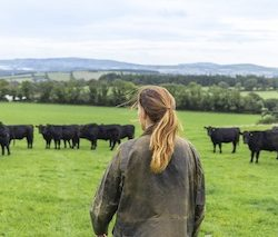 85% of UK consumers are open to choosing food and drink from Ireland, Bord Bia reports