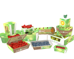 Smurfit Kappa launches innovative punnet portfolio for fresh produce market