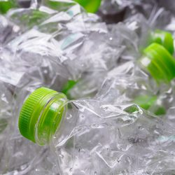 Bureau Veritas urges business to prioritise efforts to reduce single use plastics