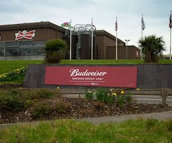 Budweiser Brewing Group drives economic recovery by investing more than £115m in its UK breweries
