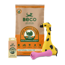 Beco unveils packaging refresh to win over new generation of eco-conscious pet owners