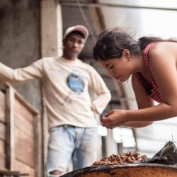 Ethical chocolate brand Ombar is on its way to becoming B Corp certified