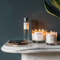 Digital drives strong growth for NEOM in 2020 and momentum continues in H121